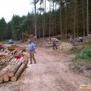 Gathering and preparing logs.