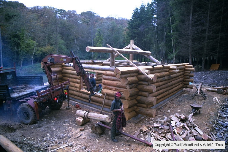 Log Cabin Roof Construction.