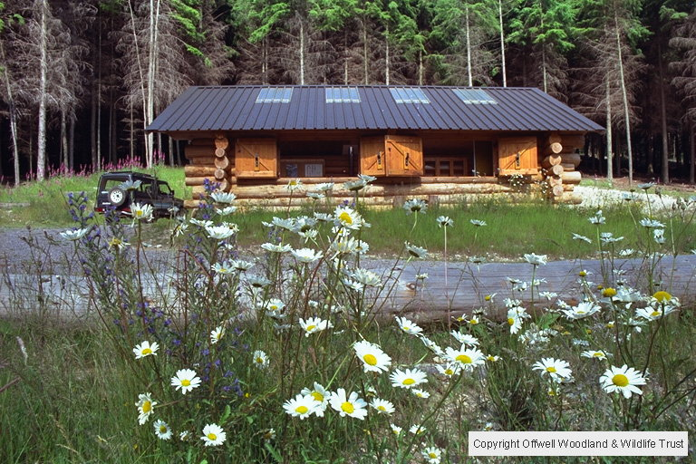 Log Cabin and wild flower meadow.